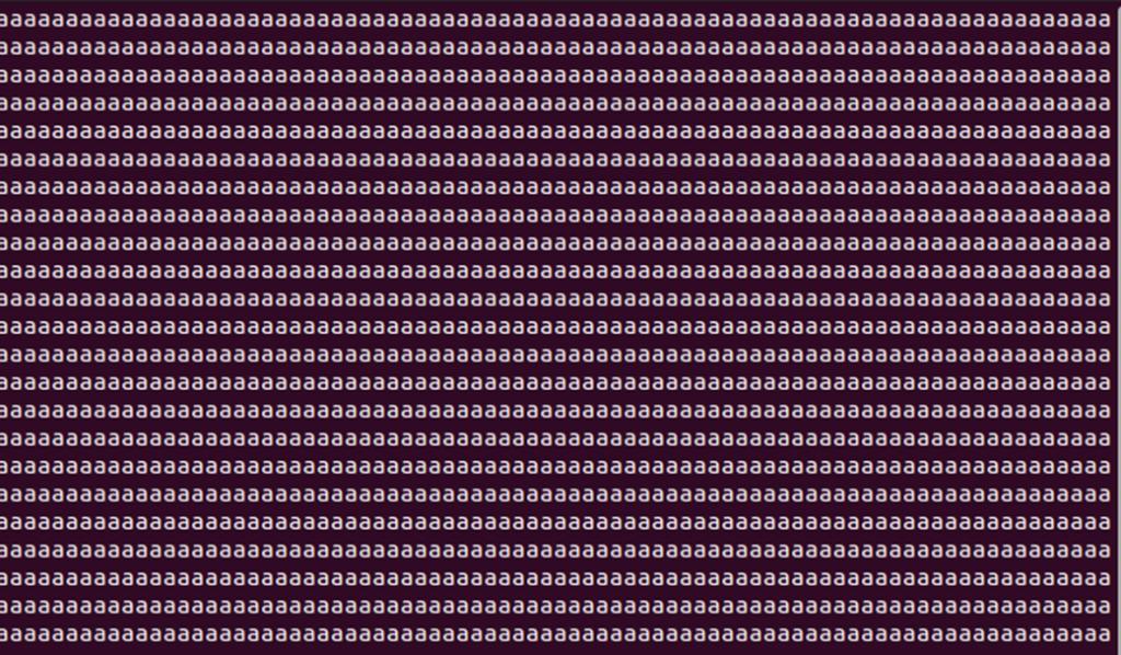 ubuntuのviでlong_file_name_file_by_fatfs.txt確認、aaaaaaaaaaaaaaaa